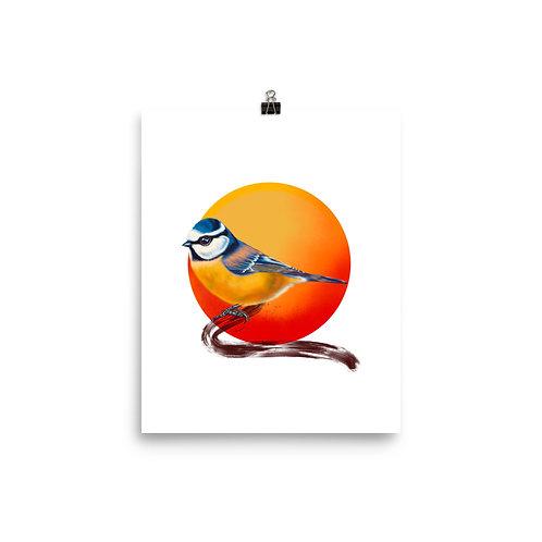 Linamal Blue Tit Poster