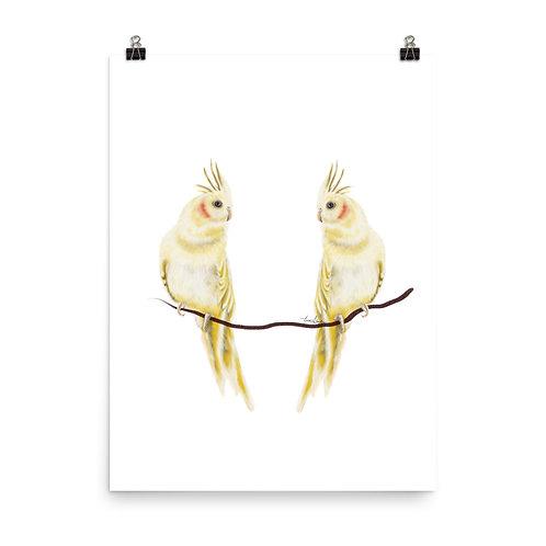 Linamal Cockatiel Poster
