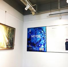 exhibition-norse_wonderland_1.jpg