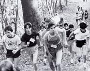 1981 Pg 136  Pic 03.jpg