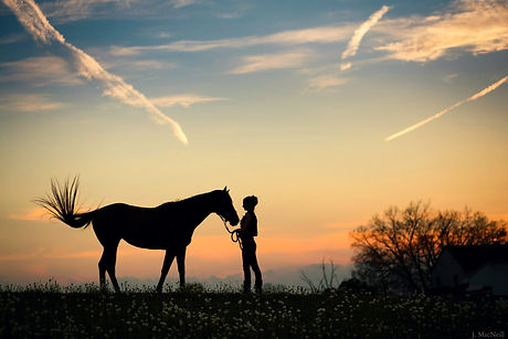 cheval femme-sensenequilibre-potentiolog