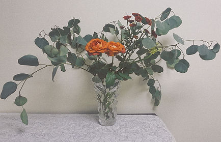 Eucalyptus and cafe rose
