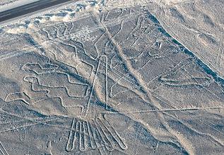 Nazca Tree.jpg