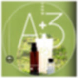A+3 2.jpg