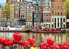 44699661-mooi-landschap-met-tulpen-en-hu