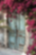 _data_pic_Zypern_Nord-Zypern_Bougainvill
