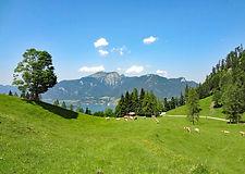 eurohike-almwandern-wolfgangsee-wanderpa