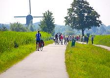 greenhartKinderdijk.JPG