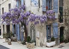 Provence2.jpg