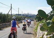 3211_645_349_FSImage_1_bike_tour_in_sale