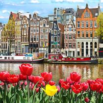 тв44699661-mooi-landschap-met-tulpen-en-