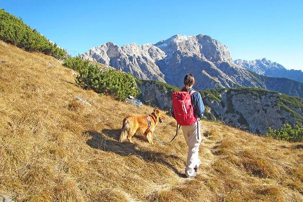 eurohike-wanderreisen-pinzgau-impression