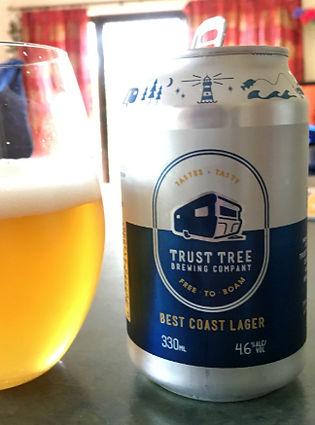 trust tree (small).jpg