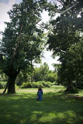 Walking to the Oaks.jpg