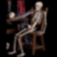 Human Skull Skeleton