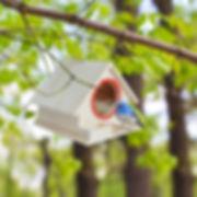 Bird House, birds nest outdoor, 100% Wooden bird roosting box, Hanging Novelty, Watching Birds Close Up