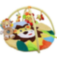 Baby Activity and Entertainment Products