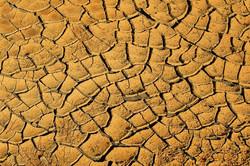 Slowing Desertification