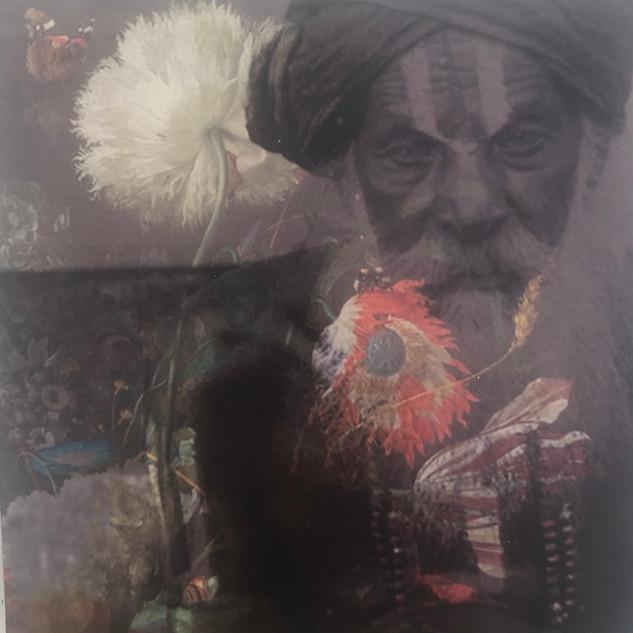 Yogi II