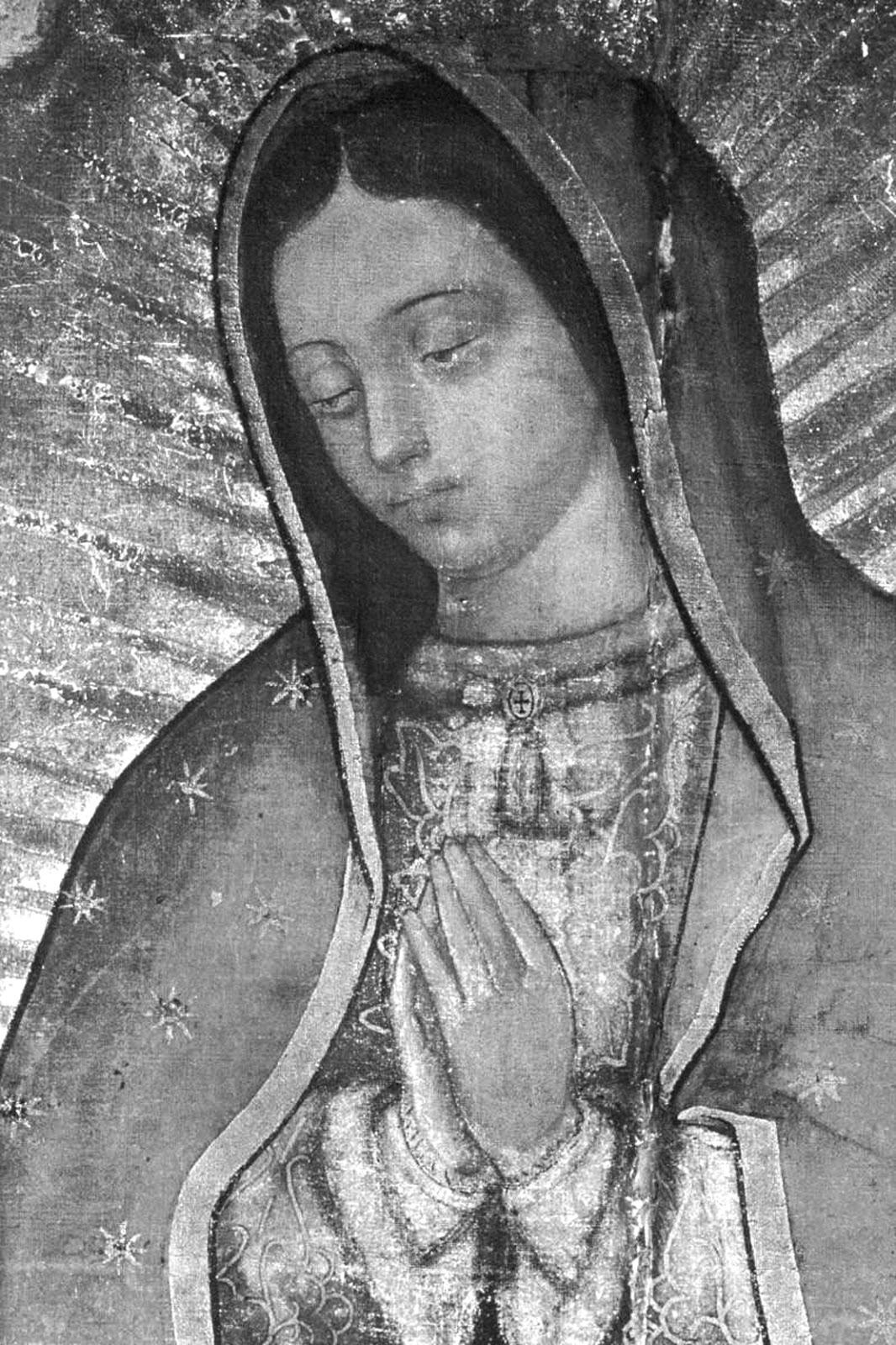 La Virgen De Guadalupe Scsschool