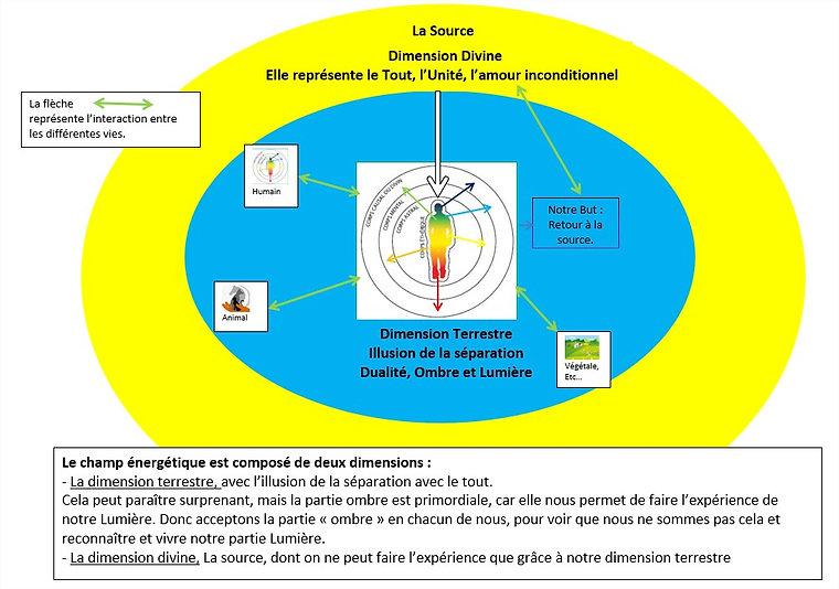 Champ_énergétique_et_nous.jpg