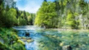 2019_GI-1130739032_Wald_und_Natur.png