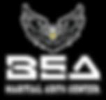 Logo BSA HQ.png