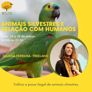 II CICLO DE PALESTRAS: ANIMAIS SILVESTRES E RELAÇÕES COM HUMANOS