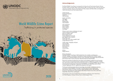 UNODC WORLD WILDLIFE CRIME REPORT 2020
