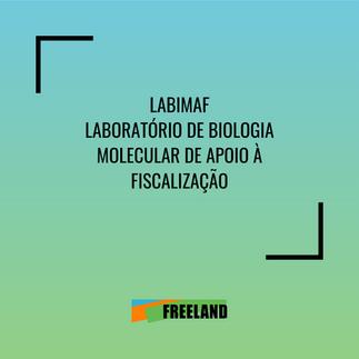 LABIMAF LABORATORIO DE BIOLOGÍA MOLECULAR EN APOYO A LA VIGILANCIA
