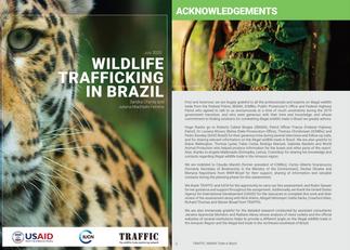 TRAFFIC REPORT:  WILDLIFE TRAFFICKING IN BRAZIL