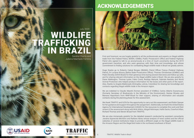 TRAFFIC REPORT:  WILDLIFE TRAFFICKING IN BRAZIL