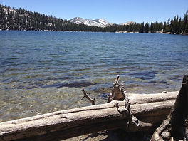 See Tenaya Lake near Tuolumne Meadows in Yosemite's High Country. Private tours available at www.LandsEndTourCompany.com