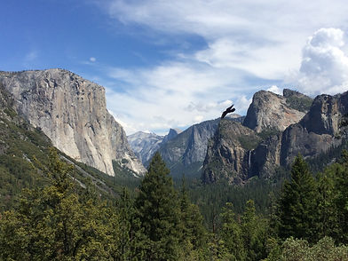 Yosemite Tunnel View Lookout