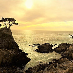 Lone Cypress at Sunset by www.LandsEndTourCompany.com  - SUV Private Tour to Monterey, Carmel, Pebble Beach & 17 Mile Drive from PCH Highway 1