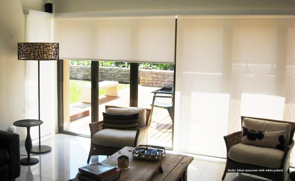 Sunscreen Sl Door.jpg