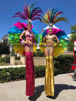 Pink & Gold Carnival