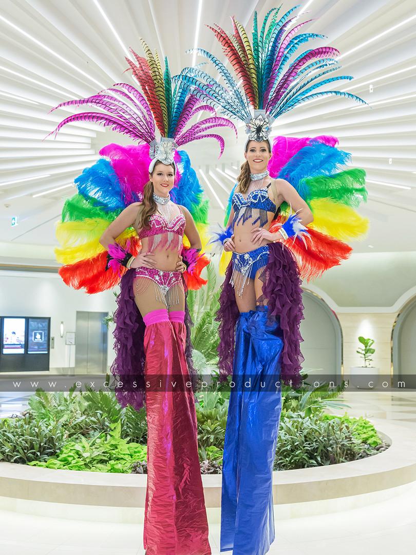 Pink & Blue Carnival