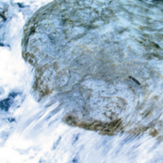 Biotel-Bergwasser.png