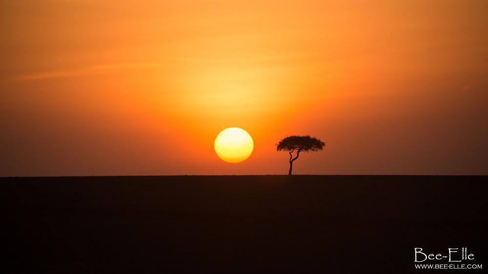 Bee-Elle - African Wildlife Photography - Kenya Sunset Africa