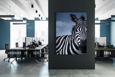Steel-Zebra-Portrait-Bee-Elle.jpg