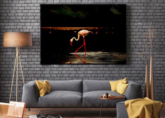 flamingo-fine-art-print-2.jpg