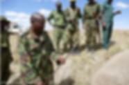 Vets treating elephant speared in Kenya