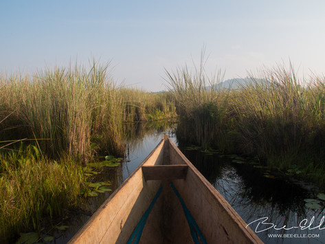 God Save Lake Victoria