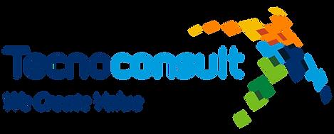 Tecnoconsult Logo V1.png