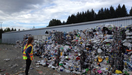 How big is our waste problem in New Zealand?