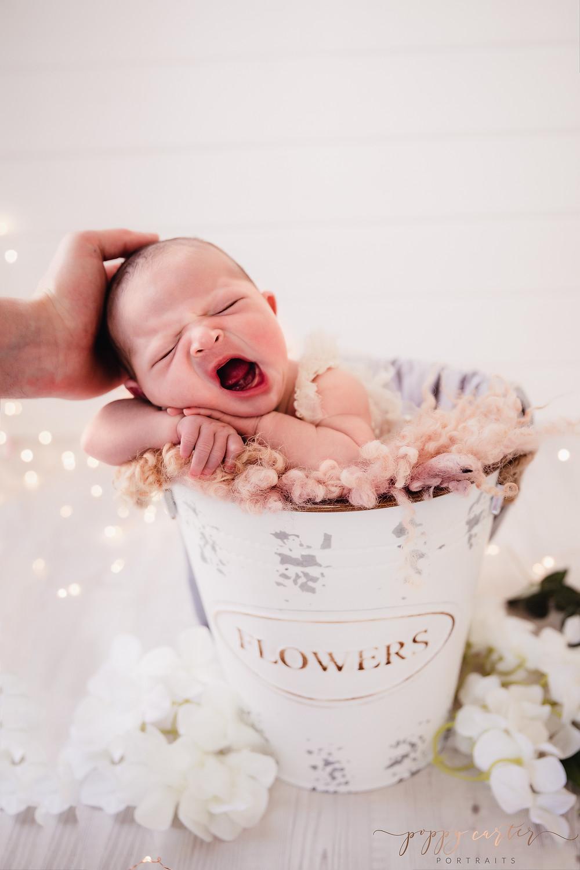 Newborn Photographer in Aylesbury   Poppy Carter Portraits