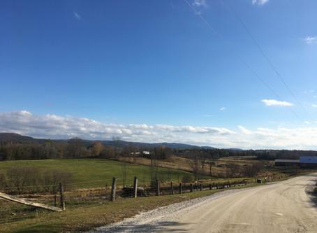 Gracefield Gravel Gobbler (85km)