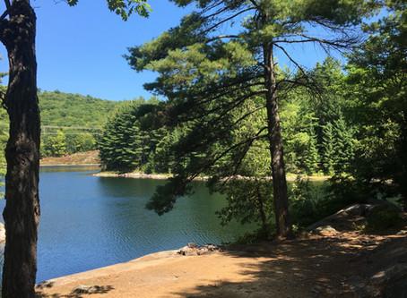 Ranger Camp Ramble (74km)