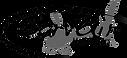 sarvair-logo-transparent.png